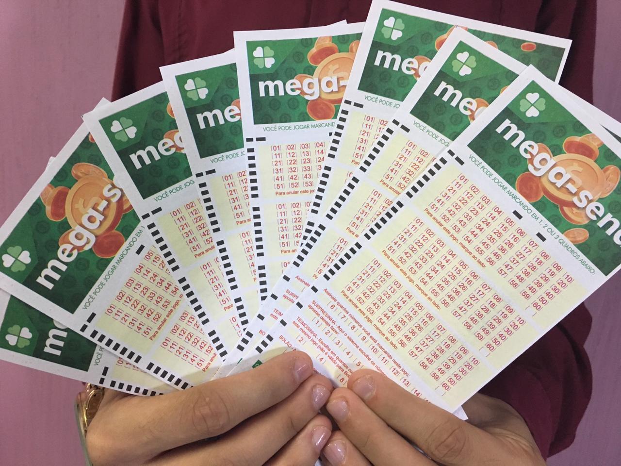 Mega-Saena-5-foto-Claudiana-Silva.jpg