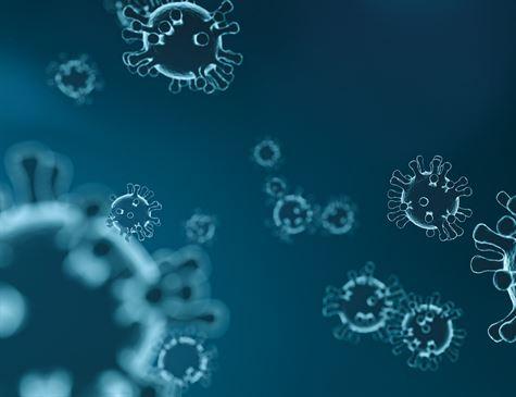 Pernambuco já tem 87 pacientes infectados pelo novo coronavírus